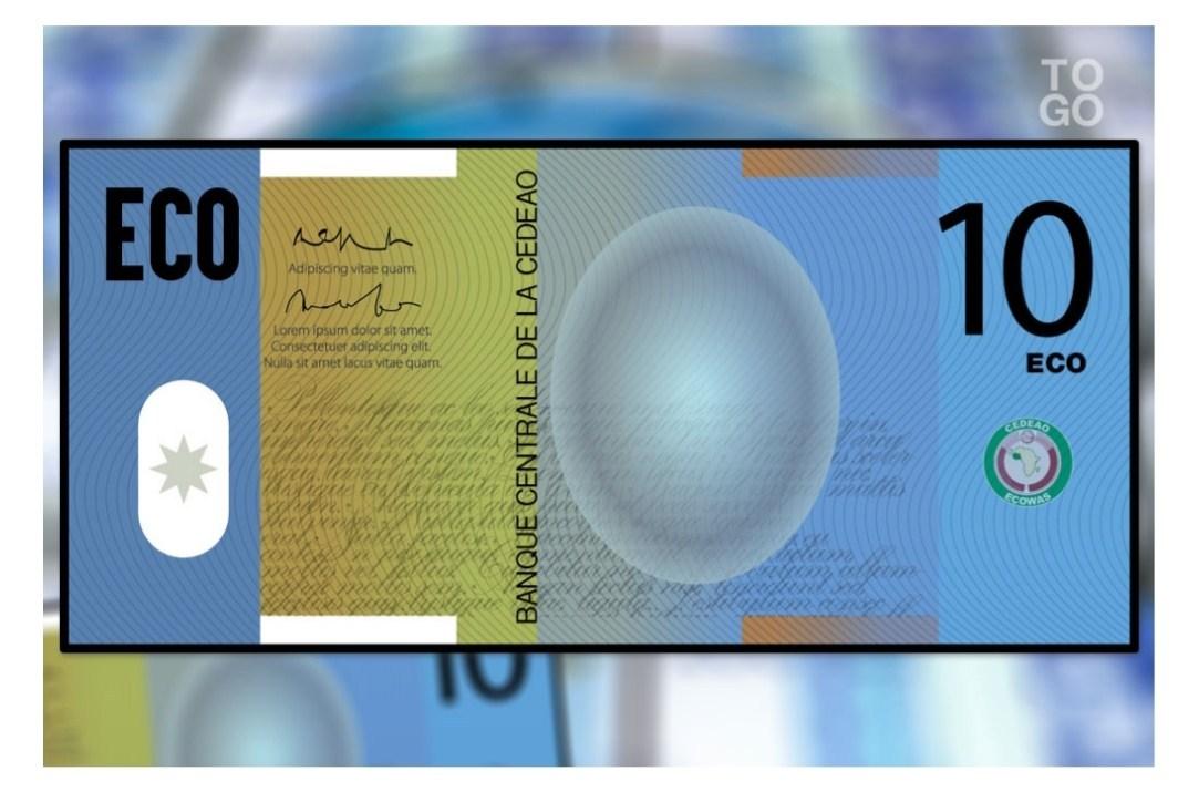 Pas de monnaie unique pour la CEDEAO en 2020